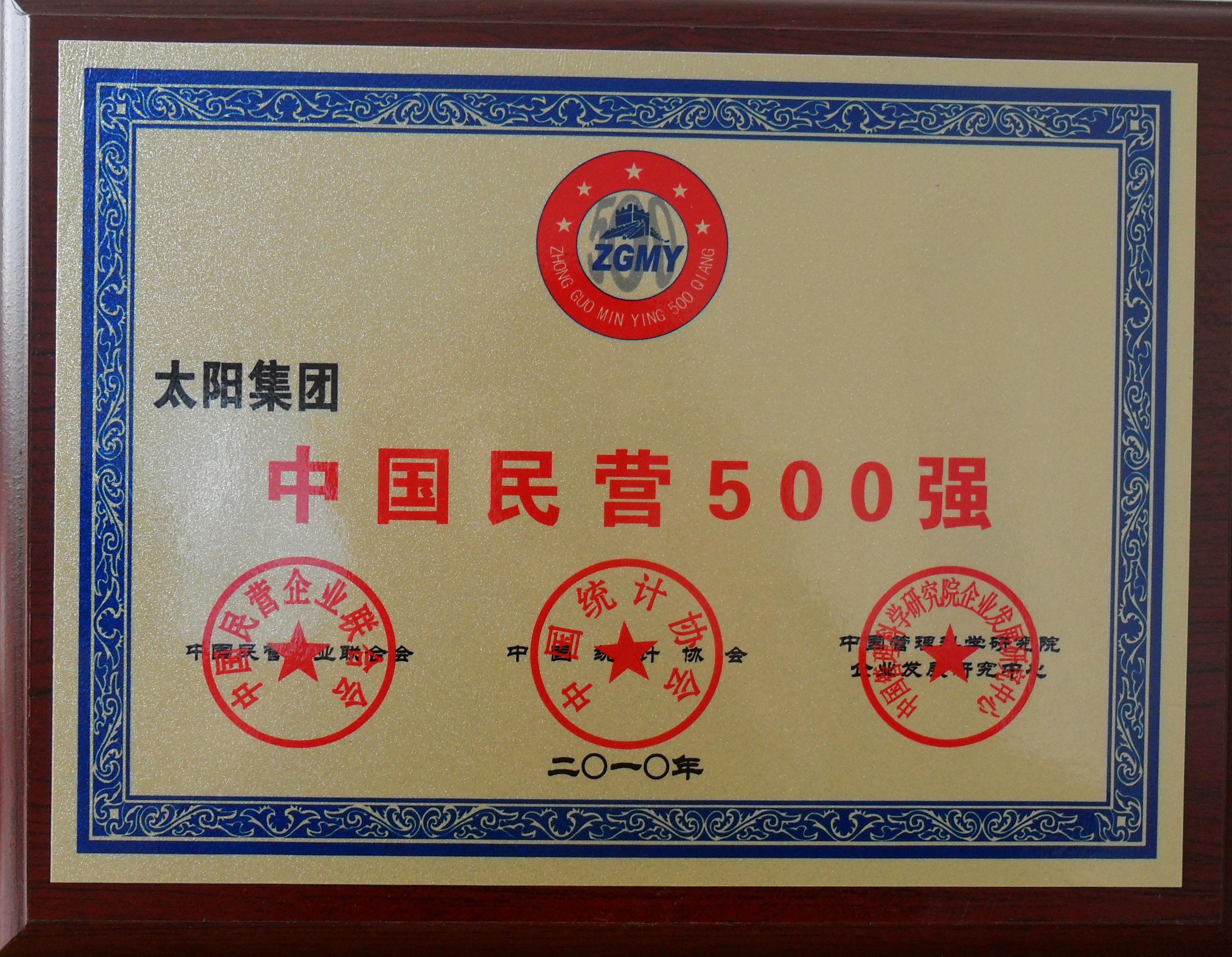 2010民营500强